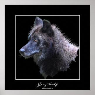 Wildes grauer Wolf-Tier-Kunst-Plakat Poster