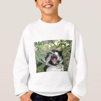 Wildes Katzen-Brüllen Sweatshirt