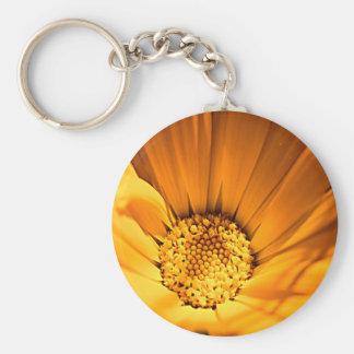 Wildes orange Gänseblümchen Schlüsselanhänger