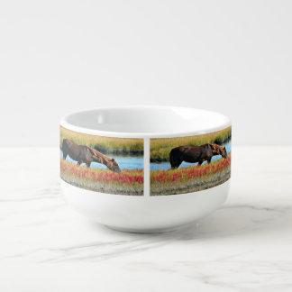 Wildes Pferd, das in The Field isst Große Suppentasse