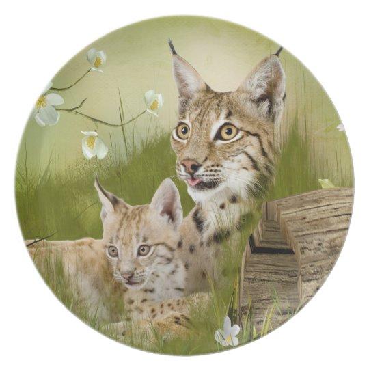 Wildkatzen als Melaminteller