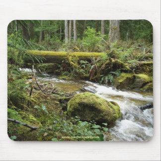 Wildnis-Natur-Foto des Regenwald-Strom-II Mousepad