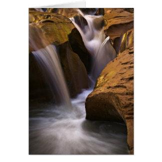 Wildnis USA, Utah, Escalante. Wasserfall in 2 Karte