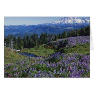 Wildnis USA, Washington Mt. Adams, Wiesen Karte