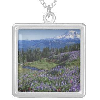 Wildnis USA, Washington Mt. Adams, Wiesen Versilberte Kette