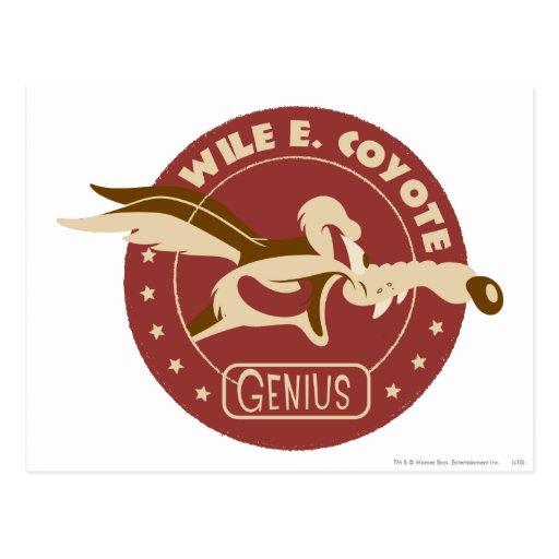 Wile E. Coyote Genius Postkarten