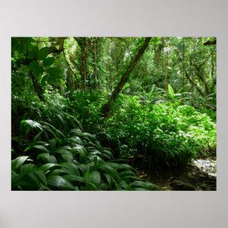 Willkommen zum Dschungel! Poster
