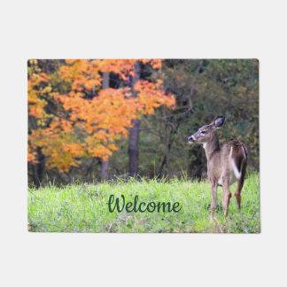 Willkommene Rotwild im Herbst Türmatte