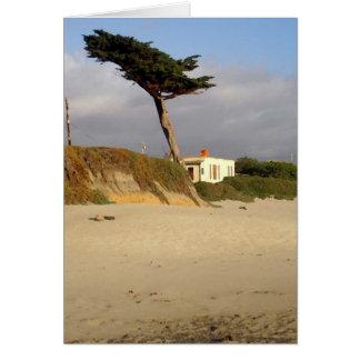 Windblown Zypresse und Haus Karte