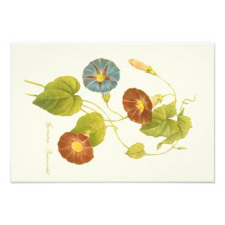 Winden-Blau-Illustration Fotodruck