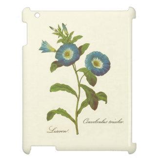 Winden-Blau-Illustration iPad Hüllen