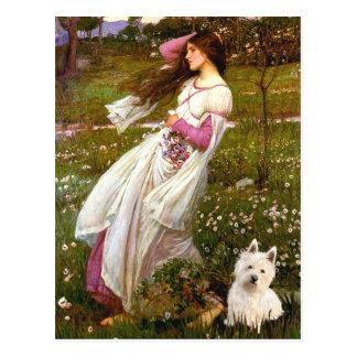 Windflowers - Westie 1 Postkarte