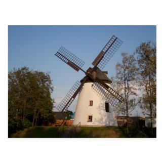 Windmühle in Podersdorf Postkarte