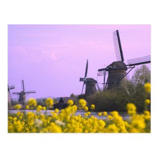 Windmühlen entlang dem Kanal in Kinderdijk, Postkarte
