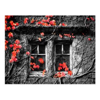Windows gerahmt mit Herbst-Blätter Postkarte