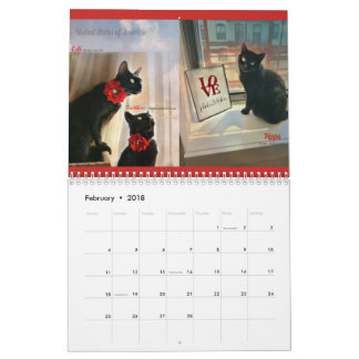 Windows zu den schwarzen Katzen des Kalenders der Wandkalender