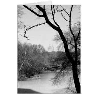 Winter-Baum - Central Park NYC Karte