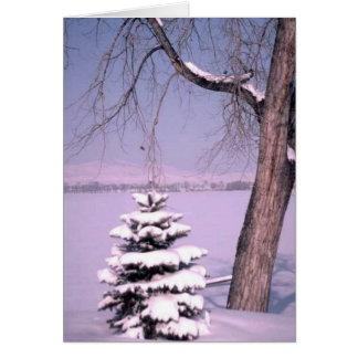 Winter-Baum-Gruß-Karte Karte