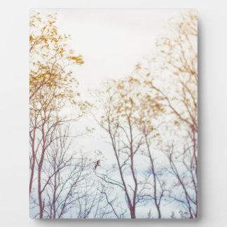 Winter-Bäume Fotoplatte
