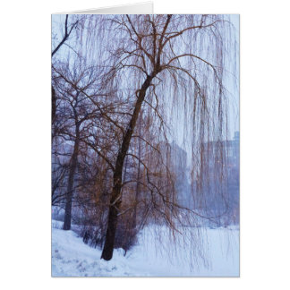 Winter-Bäume im Central Park Karte