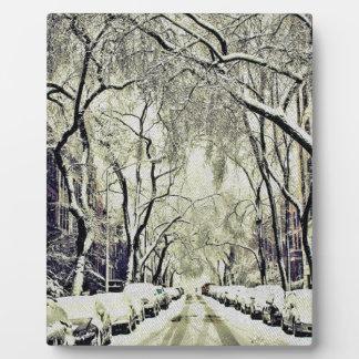 Winter bedeckte Straßen Fotoplatte