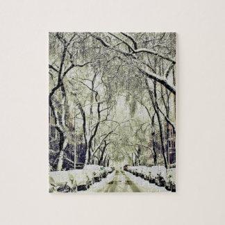 Winter bedeckte Straßen Puzzle