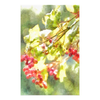 Winter-Beeren-Aquarell Briefpapier