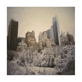 Winter-Blues in Central Park Holzleinwand
