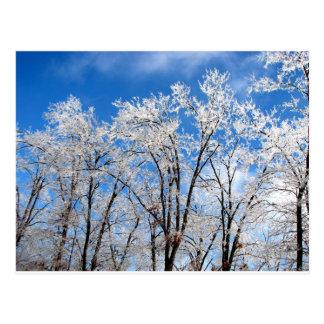 Winter-Blues Postkarte