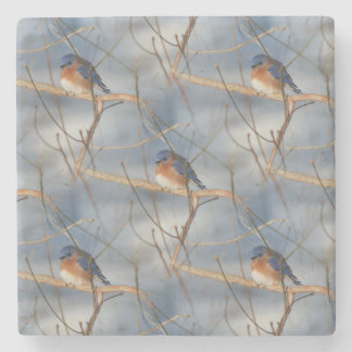 Winter-Drossel-Natur-Kunst-Muster Steinuntersetzer