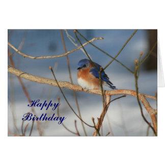 Winter-Drossel-Tierphotographie-Geburtstags-Karte Karte