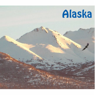 Winter Eagle und Berge Fotoskulptur Magnet