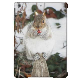 Winter-Eichhörnchen iPad Fall