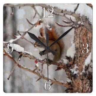 Winter-Eichhörnchen, Schnee u. roter Quadratische Wanduhr