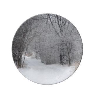 Winter-Einsamkeit Teller