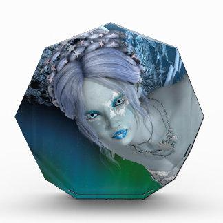 Winter-Fee Acryl Auszeichnung
