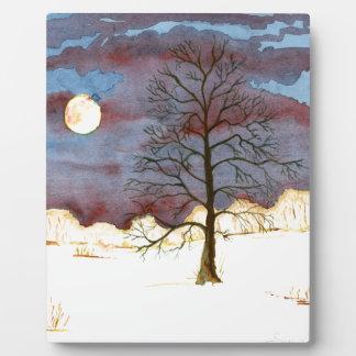 Winter-Feld Fotoplatte