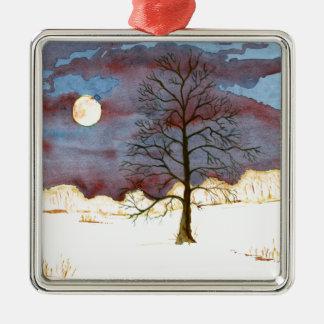 Winter-Feld Quadratisches Silberfarbenes Ornament