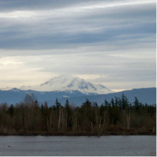 Winter-Fluss-Ansicht Freistehende Fotoskulptur