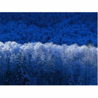 Winter Freistehende Fotoskulptur