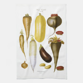 Winter-Gemüse Küchentuch