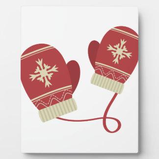 Winter-Handschuhe Fotoplatte