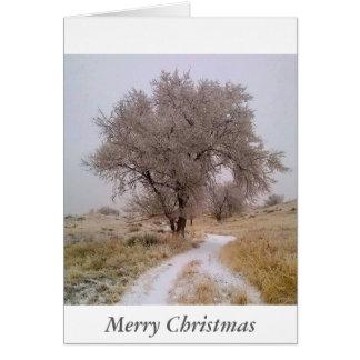 Winter in der Colorado-Weihnachtskarte Karte