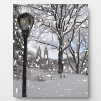 Winter in zentralem Park1 Fotoplatte