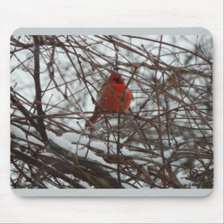 Winter-Kardinal Mauspad