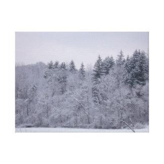Winter-Landschaft Gespannte Galerie Drucke