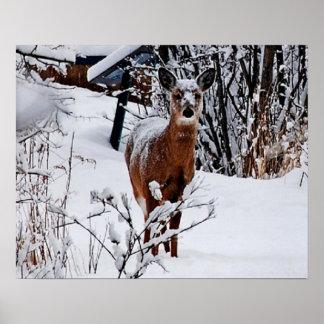 Winter-Landschaft mit Rotwild-Wert-Plakat-Papier Poster