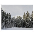 Winter-Landschaft nahe Koenigsfeld, Schwarzwald, Poster