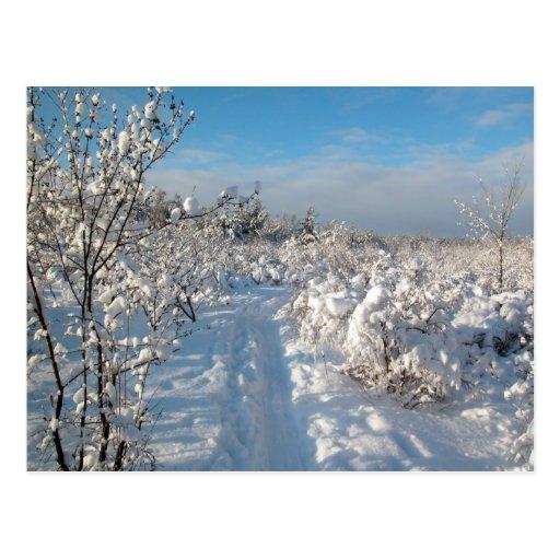 Winter-Landschaft - Postkarte