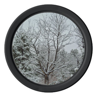 Winter-Märchenland Pokerchips
